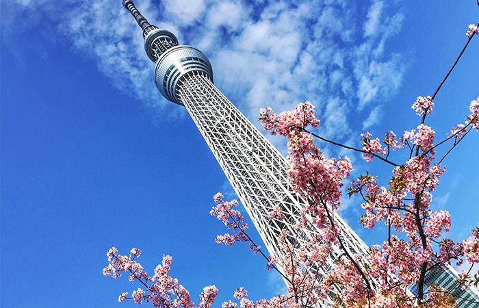 Das zweithöchste Bauwerk der Welt und höchste Fernsehturm der Welt