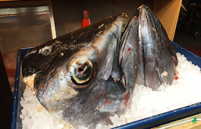 Auf dem größten Fischmarkt in Tokyo gibt es viel zu sehen