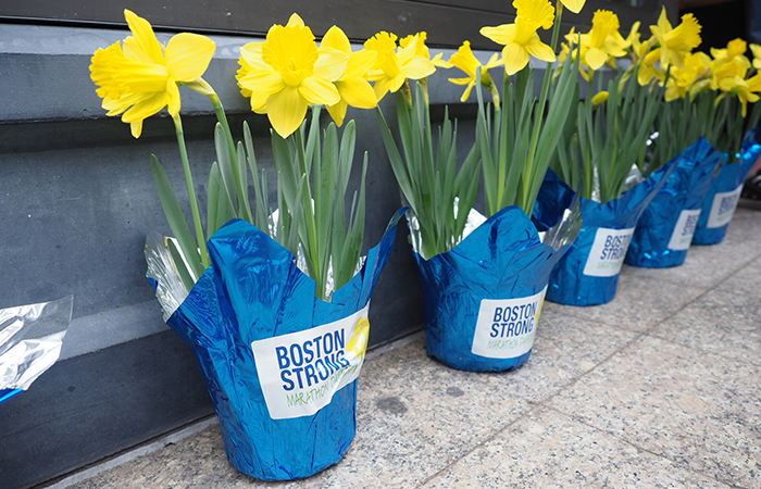 Blumen in Boston für den Boston Marathon, Boston Strong